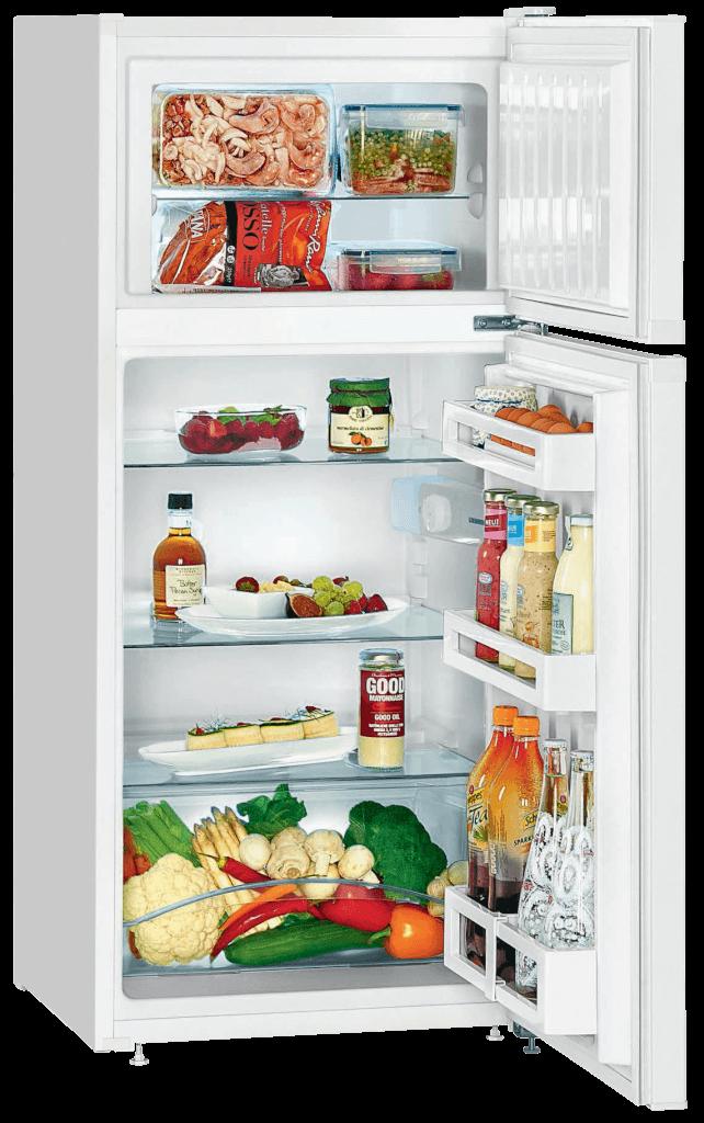 Combiné réfrigérateur et congélateur solaire armoire 195 L, FREECOLD CRC-195